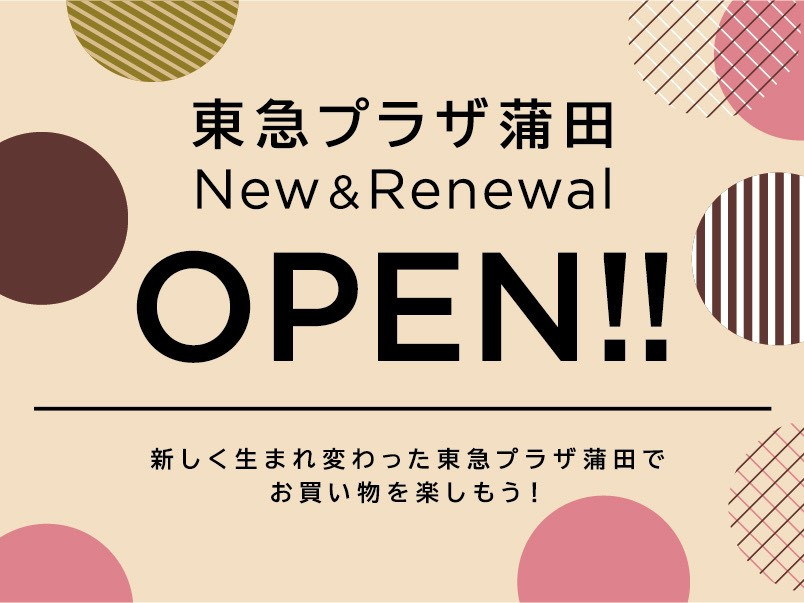 【2020 AUTUMN】 NEW&RENEWAL OPEN