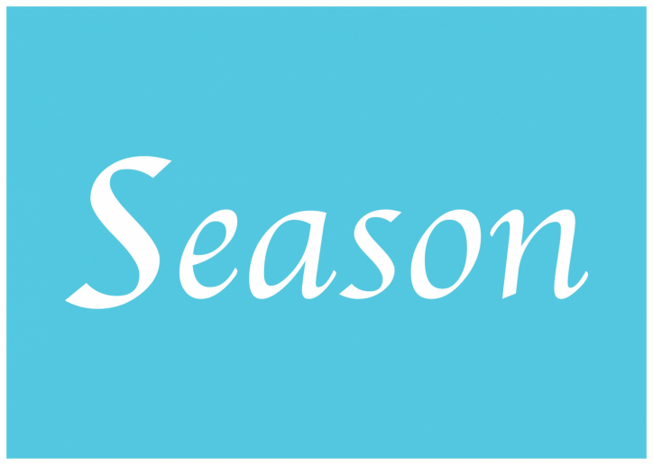 Season ロゴ